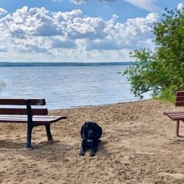 Assistenzhund Pelle am See